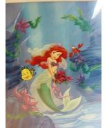 Matted Disney Ariel (Little Mermaid) Art Print, 11x 14 ~  Bruce McGaw Gr... - $4.00