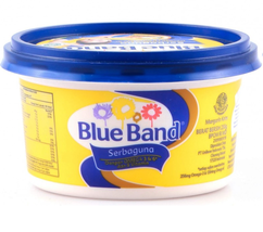 BLUEBAND MARGARINE, All Purpose Butter for cooking 8.81 oz - $9.89