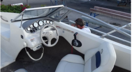 2012 Stingray 195RX Bowrider 19 For Sale in Palm Harbor, Florida 34685 image 2