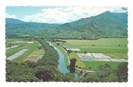 Hawaii Hanalei Valley Island of Kauai Taro Fields Vintage Postcard - $4.99
