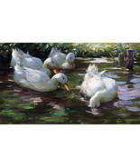 Four Ducks on the Pond Painting by Alexander Max Koester Art Reproduction - $26.99+