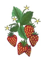 Nature Weaved in Threads, Amazing Fruits[Strawberry] [Custom and Unique] Embroid - $12.87