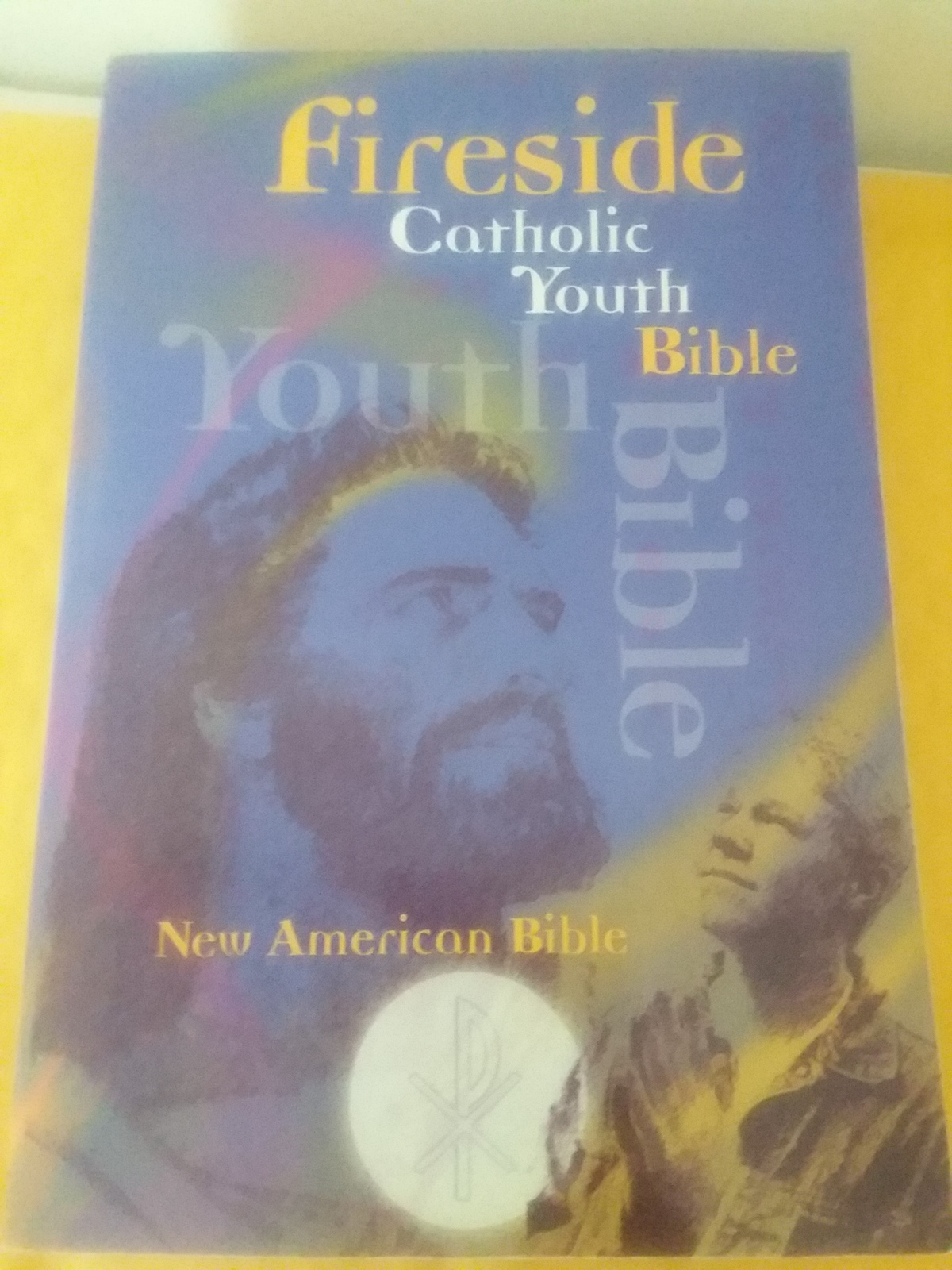 Primary image for Fireside Catholic Youth Bible New American Bible Paperback