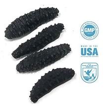 SB Organics Black Pin Small - Wild Caught Sea Cucumber Dried All Natural Nutriti