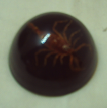Vintage Red Scorpion Domed Lucite Paperweight // Authentic Scorpion Disp... - $8.50