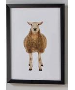 Sheep w/Black PS Frame & PVC Cover - $29.99