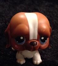 Lps St.Bernard littlest Pet Shop (G) - $14.16