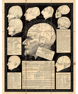 1867 Educational View of the Human Skulls. Poster Wall Art Poster Doctor Gift - $12.87 - $29.65