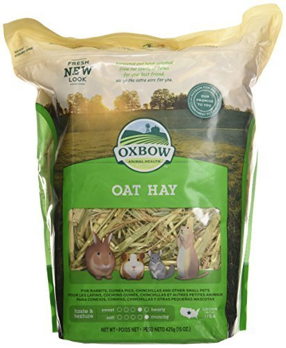 Oxbow Animal Health Oat Hay for Pets, 15-Ounce