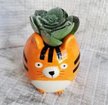 Tiger Animal Planter with Faux Succulent, Orange Cat Ceramic Plant Pot