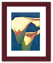 "Art Photograph - Framed - ""Sonic Callas"" - $75.00"