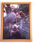 "Flamingo with Baby Custom Tile Plaque Framed Handmade 9"" x 7"" - $8.75"