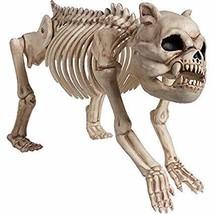 Halloween Cemetery Skeleton Dog - ₹1,471.55 INR