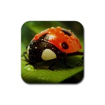Cute Ladybug In The Raining Day (Square) Rubber Coaster - $2.99
