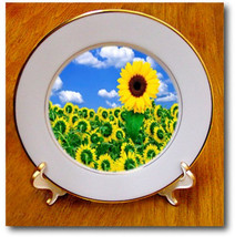 Cp_56879_1 1 Sunflower Rebels Porcelain Plate, 8-Inch - $100.70