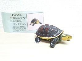 Kaiyodo Choco Egg YELLOW MARGINED BOX TURTLE animal figure chocoq animat... - £6.01 GBP