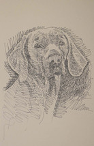 ORIGINAL WEIMARANER DOG ART Lithograph #42 Kline adds your dogs name fre... - $49.45