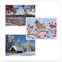 10 x 14 Multipack Winter Placemats with 3 Designs/Case of 1000 - $164.52 CAD