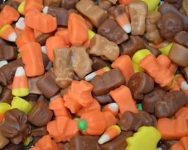 Candy Corn and Autumn Mix loose 5 lb Bag - $39.99