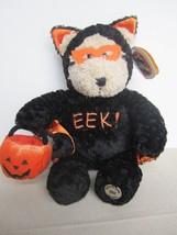Starbucks 2003 Halloween Bear with Tag pumpkin jack o lantern plush EEK!!! black - $15.99
