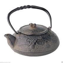 Nanbu Tetsubin - Hisago (Gourd design) 0.4 Liter : Japanese Cast Iron Te... - $177.64