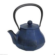 [Rare] Nanbu Tetsubin - Miyabi (L) - 1.0 Liter : Japanese Blue Cast Iron Tea Pot - $327.62
