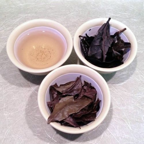 Wholesale: Kihara Tea- Organic Kyobancha (Winter-roasted green tea) 1kg / 2.2lbs
