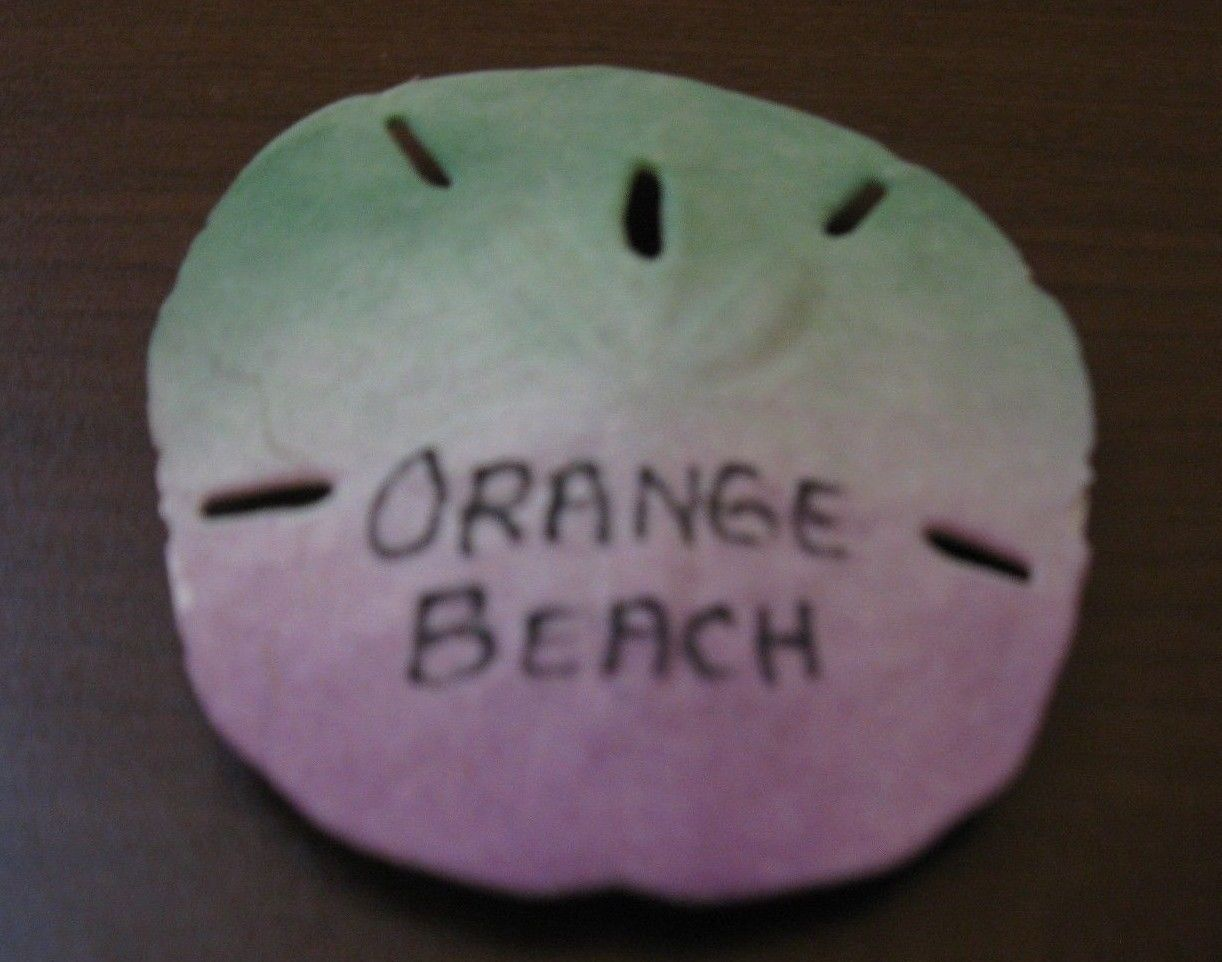 Orange Beach Florida Decorative Collectible Shell Magnet 2.5 x 2.75in Nice! #R28