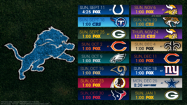 Detroit Lions 2017 Schedule turf Poster 24 X 36 inch - $18.99