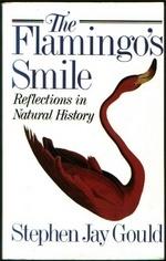 Flamingo s smile