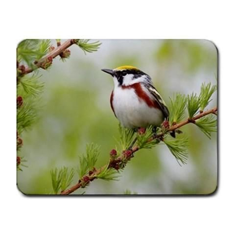 Photography of a Sparrow Mousepad