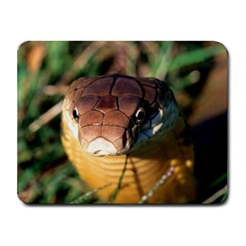 Cold Blooded Snake Mousepad