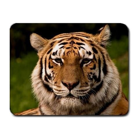 Beautiful Tiger Cat Mousepad