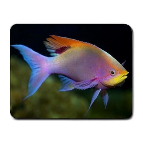 Colored Fish Mousepad - Ocean Photography