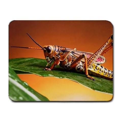 Grasshopper Mousepad - Insect Photography