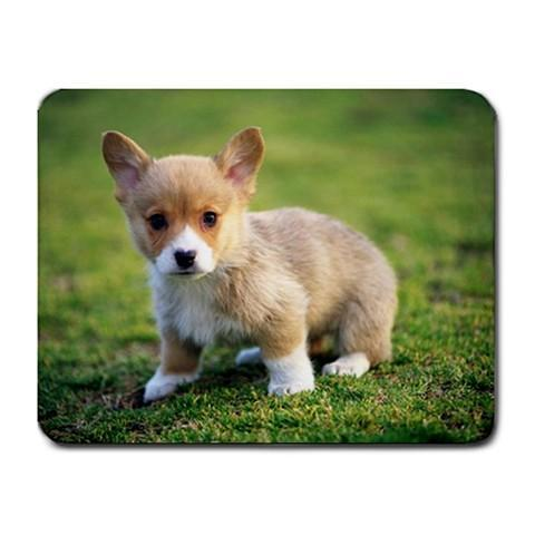 Little Baby Fox Mousepad - Photography