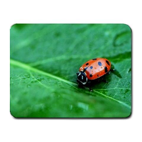 Lady Bug on Leaf Mousepad - Photography