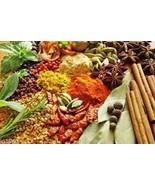 Lenier's BBQ Hot Ethiopian Berebere Seasoning/ Rubs 2oz Free Shipping  - $5.75