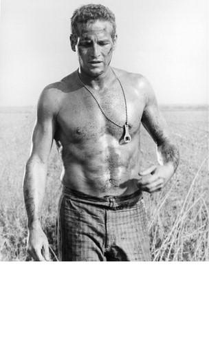 Cool Hand Luke MM Paul Newman Vintage 11X14 BW Movie Memorabilia Photo