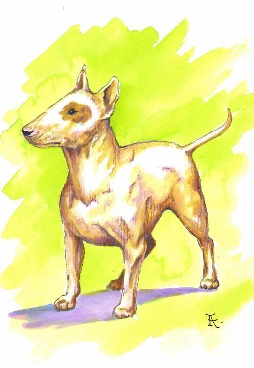 Akimova: DOG, BULL TERRIER, portrait, animal, watercolor
