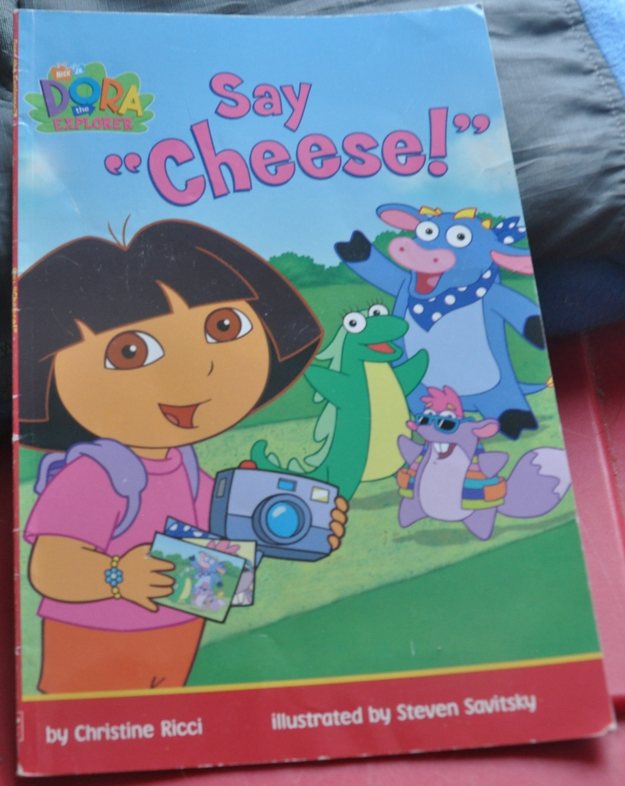 Dora say cheese   cover