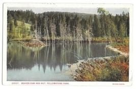 WY Yellowstone Park Beaver Dam and Hut Vtg Haynes Postcard Wyoming - $6.49