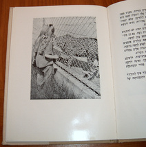 Shirley (Daphna) Visits the Zoo Hebrew Version Belle Benchley Book Vintage 1957 image 5