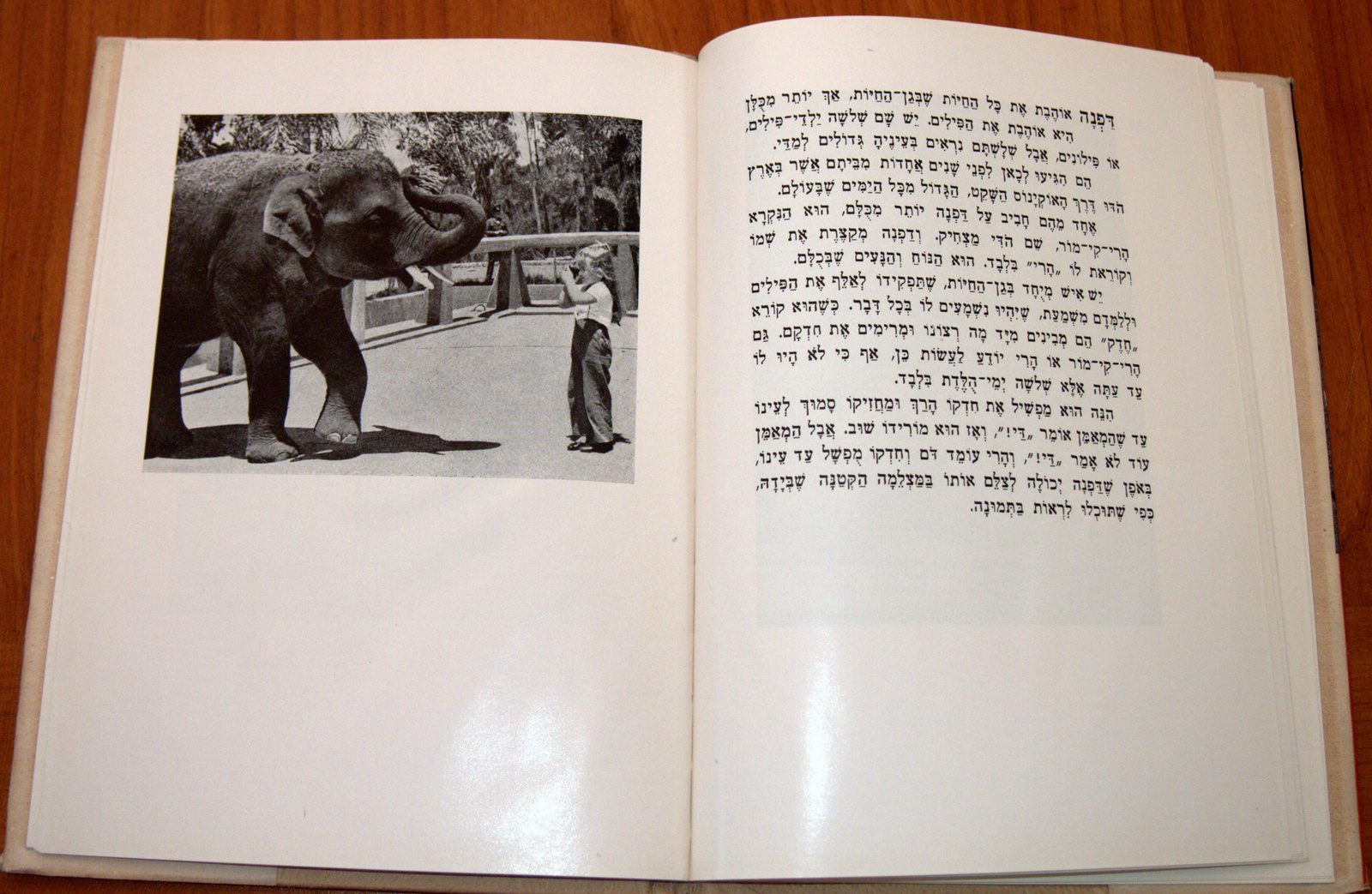 Shirley (Daphna) Visits the Zoo Hebrew Version Belle Benchley Book Vintage 1957