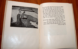 Shirley (Daphna) Visits the Zoo Hebrew Version Belle Benchley Book Vintage 1957 image 7