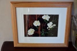 Dogwood Blossoms Flower Photo of Plant Photography Art Print Wood Framed... - $21.77