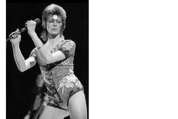Bowie174221bwvmm