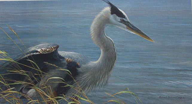 Robert Bateman Lunging Heron #67 Mill Pond Press Bird in Lake Setting Sold Out!