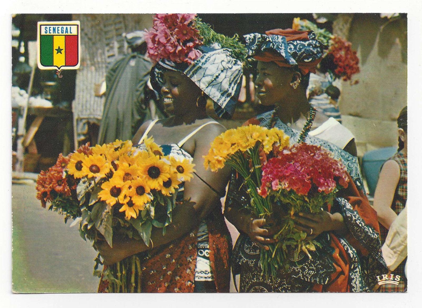 Africa Senegal Flower Vendors Women Vendeuses de Fleurs Dakar Vtg Postcard 4X6