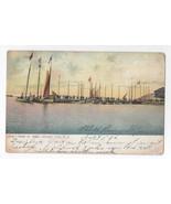 Atlantic City NJ Inlet Sail Boats New Jersey 1906 Postcard UDB - $5.69